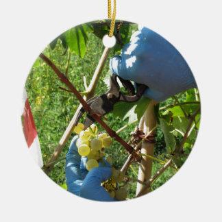 Main coupant les raisins blancs, temps de récolte ornement rond en céramique