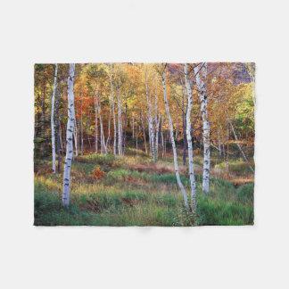 Maine, Acadia Nationaal Park, de Herfst Fleece Deken