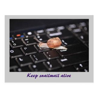 Maintenez le snail mail vivant carte postale