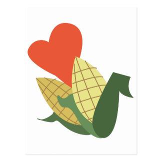 Maïs sur l'épi carte postale