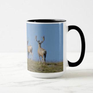 Mâles de cerfs communs de mule D0009 dans la tasse