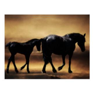 Maman de chevaux et I Carte Postale