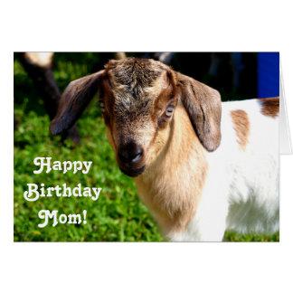 Maman de joyeux anniversaire d'enfant préféré carte