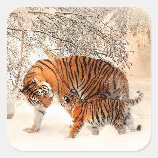 Maman Tiger et tigre de bébé dans l'autocollant de Sticker Carré