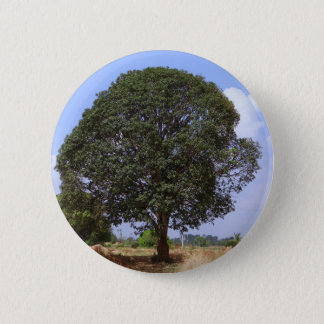 Manguier Badge Rond 5 Cm