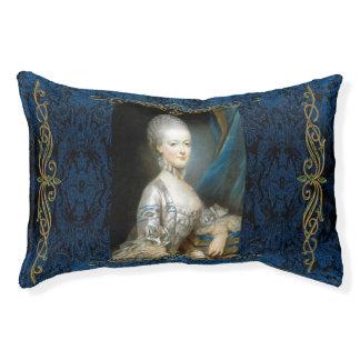Marie Antoinette dans le lit bleu de chien
