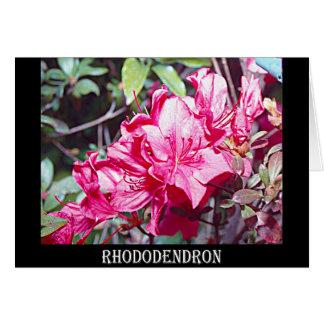 Maximum de rhododendron de la Virginie Occidentale Carte