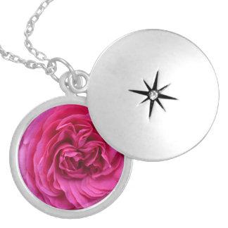 Médaillon Avec Fermoir Amour de rose de rose