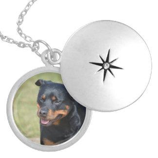 Médaillon Avec Fermoir Rottweiler sans astuce