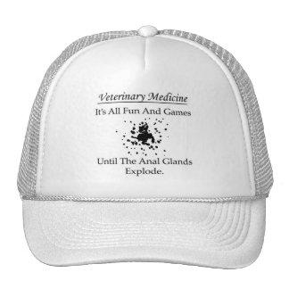 Médecine vétérinaire - c'est tous les amusement et casquette de camionneur