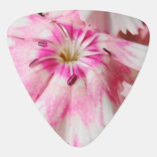 Médiators Fleurs roses douces de William