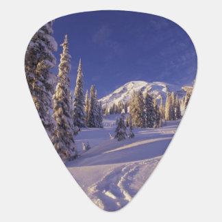 Médiators Na, Etats-Unis, Washington, le mont Rainier NP,