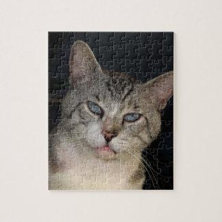 Meece le puzzle de chat