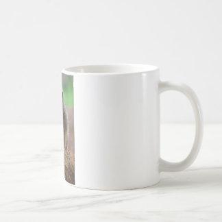 Meerkat debout mug