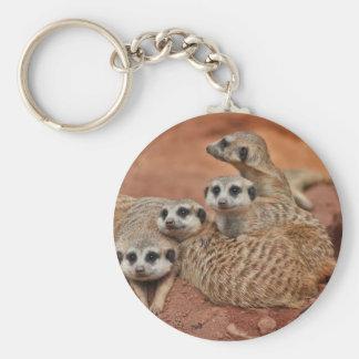 Meerkat Porte-clés