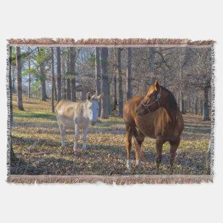 Meilleurs amis cheval et couverture de jet d'âne