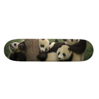 Melanoleuca d'Ailuropoda de bébés de panda géant)  Skateboards Personnalisés