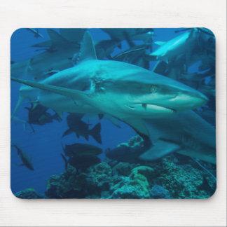 Mer de corail de la Grande barrière de corail de Tapis De Souris