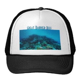 Mer de corail de poissons tropicaux de la Grande Casquettes