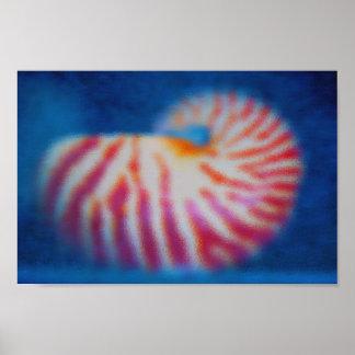 Mer Shell Poster