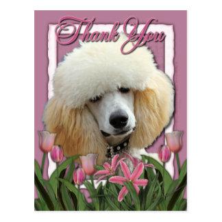 Merci - tulipes roses - caniche - abricot carte postale