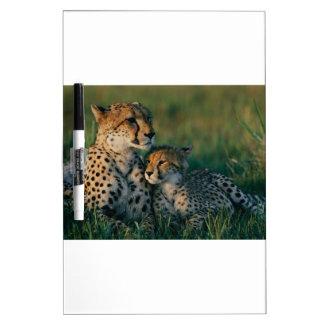 Mère de guépard avec son CUB Tableaux Effaçables Blancs