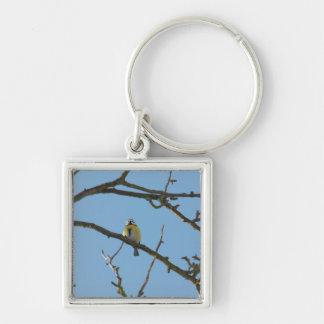 mésange dans l'arbre porte-clé carré argenté