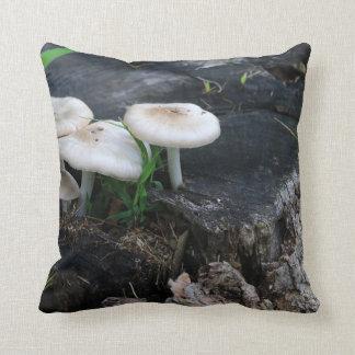 Mi champignons d'étés coussin