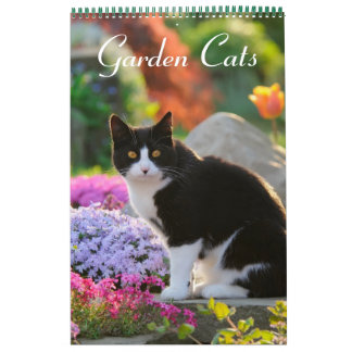 Milieu de taille des chats 2017 de jardin calendriers