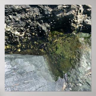 Mini piscine d'eau sur la plage rocheuse