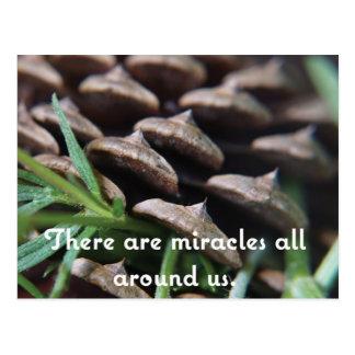Miracle de carte postale d'amitié