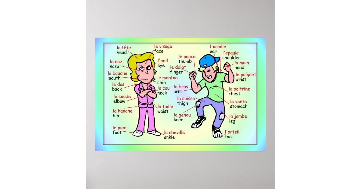 Moderne talen het frans delen van het lichaam poster for Ladenblok in het frans