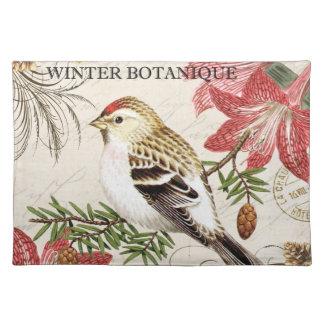 moderne vintage Franse de wintervogel