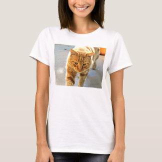 Mon chat Rudy sur un T-shirt