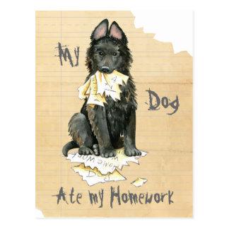 Mon chien de berger belge a mangé mon travail cartes postales