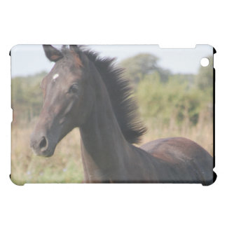 Mon nouveau poney coques iPad mini