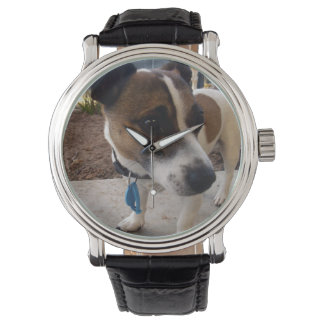 Montre Attraction de chien de Fox Terrier,