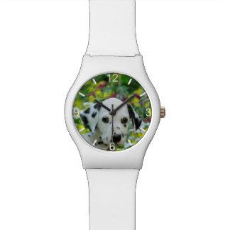 Montre Cadran-plat dalmatien de chiot de chien repéré par