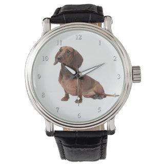 Montre de teckel montres bracelet
