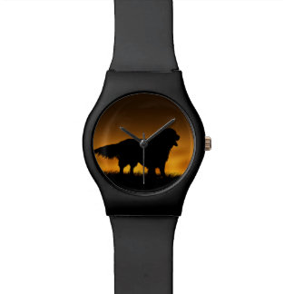 Montre Golden retriever