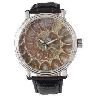 Montre nature animale d'escargot de noir fossile
