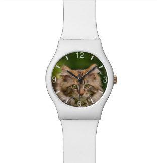 Montre Photo mignonne de tête de chat de chaton de