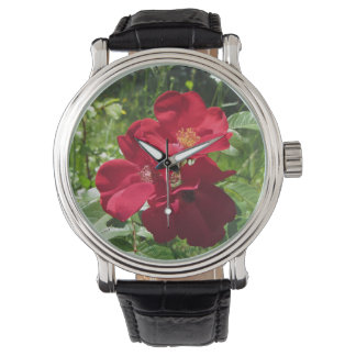 Montre simple de wms de roses rouges