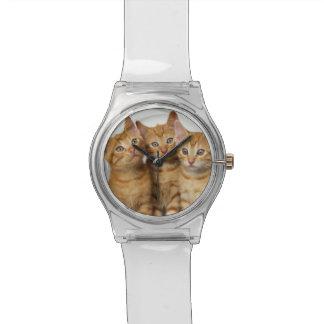Montre Trois de gingembre de chat de chatons femmes