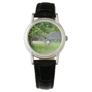 Montres Bracelet Fox_Terrier_Scare_Face_Ladies_Black_Leather_Watch