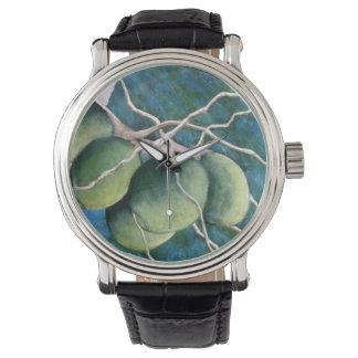 Montres Bracelet Groupe de noix de coco sur l'arbre