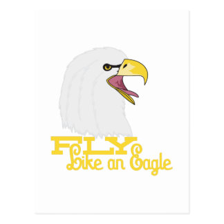 Mouche comme Eagle Carte Postale