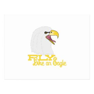 Mouche comme Eagle Cartes Postales
