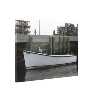 Mouette sur une toile de bateau de la crique N.S.