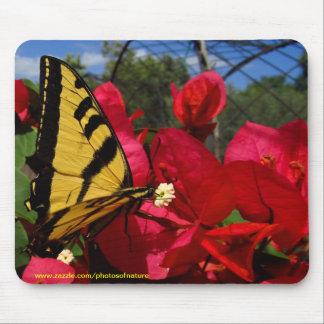 Mousepad - Butterlfly suçant sur une fleur Tapis De Souris